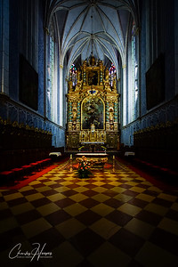 Cathedral at the Gottweig Abbey