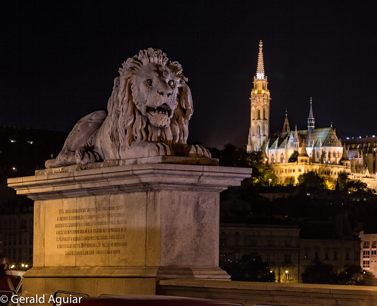 Stone Carved Lion with Matthias Church Backdrop