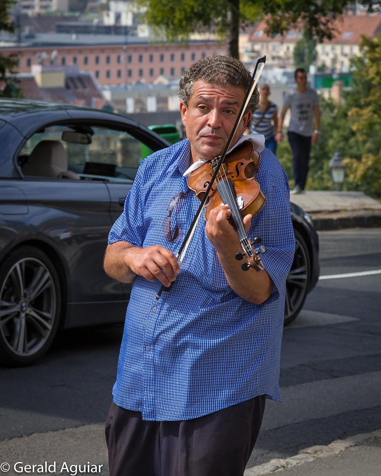 Street Vendor - Violinist