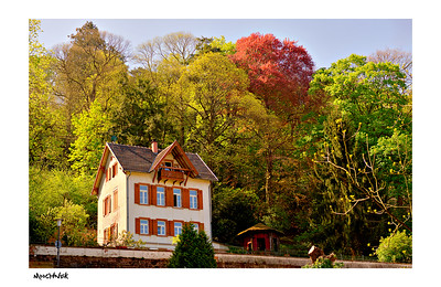Solitary House in Heidelberg...