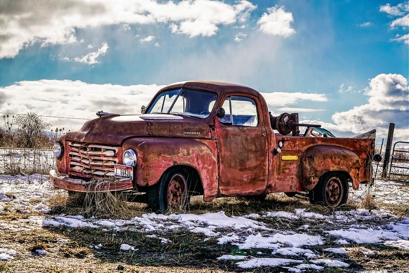 Rusty Survivor