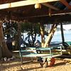 Trellis Bay