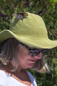 Barrie's Butterfly Hat