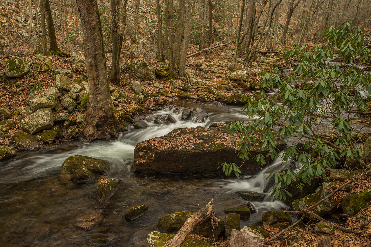 Little Stony Creek filled with boulders and rushing water.
