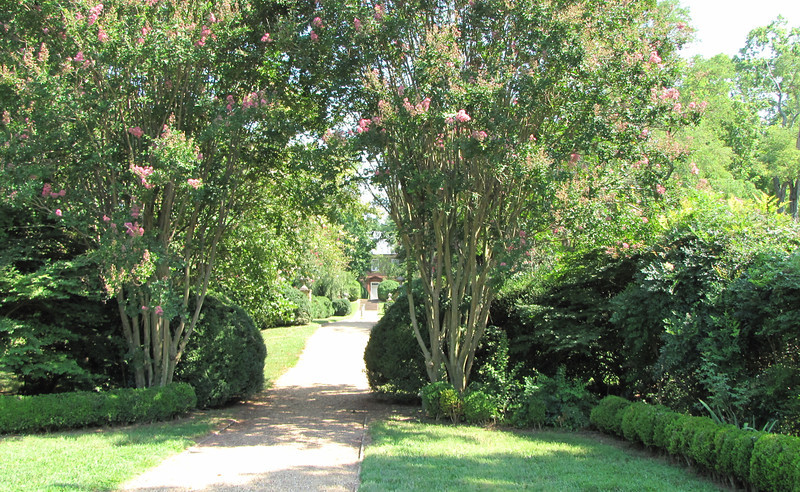 Looking Toward the Plantation House with River Behind - This Was Called The Winter Garden - Berkeley Plantation, Charles City, Virginia  7-27-11
