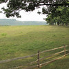 Relaxing Open Views - Ash Lawn Highland - James Monroe's Home - Charlottesville, VA  9-3-10