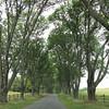 Entrance Sets the Mood - Ash Lawn Highland - James Monroe's Home - Charlottesville, VA  9-3-10