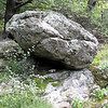 Boulder Along Greenstone Overlook Trail - Milepost 9 Blue Ridge Parkway  9-3-10