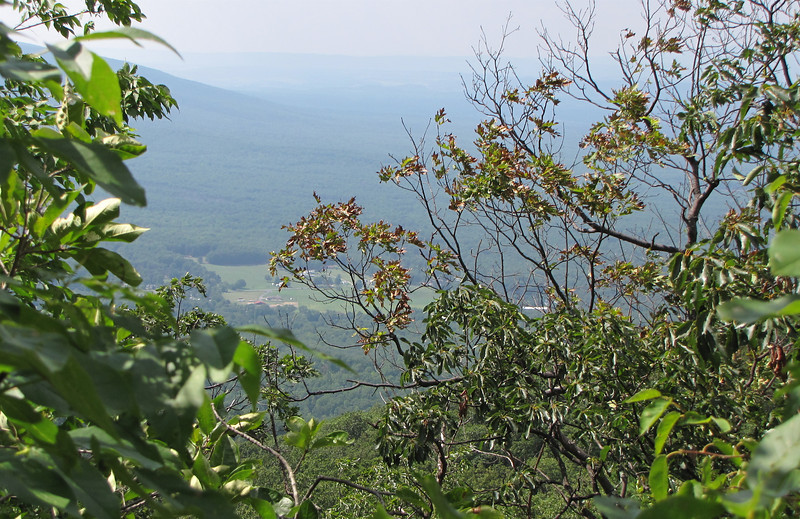 View of the Valley Along Greenstone Overlook Trail - Milepost 9 Blue Ridge Parkway  9-3-10