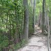 Three Lakes Nature Center - Richmond, VA - What A Trail