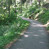 Paved Trail At Crabtree Falls - Tyro, VA