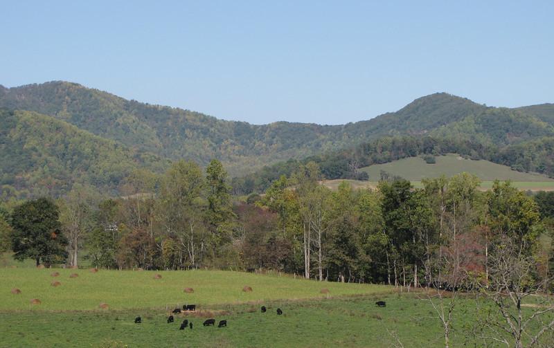 Mountain Views at Drumheller's Apple Harvest Festival - Lovingston, VA  10-17-10