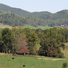 Gorgeous Views at Drumheller's Apple Harvest Festival - Lovingston, VA  10-17-10