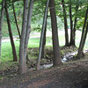 Woodland Setting with Stream and Pond - Frontier Culture Museum