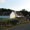 Stone Wall and Sheep in the Field - An Irish American Homestead - Frontier Culture Museum
