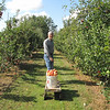 Randal Hauls the Two 5-Gallon Buckets to the Car - Fruit Hill Orchard