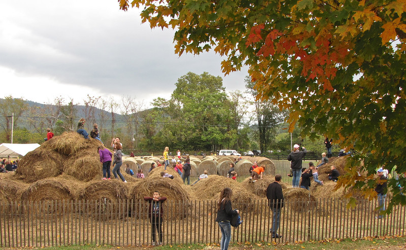 Children Playing in Bales of Hay - Graves Mountain Apple Harvest Festival - 10/19/13