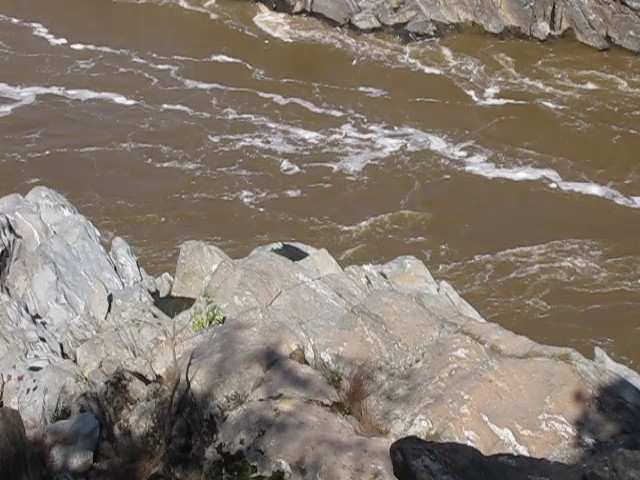 VIDEO:  Potomac River Zooming Into a Pothole Formed In The Rock - Many Examples of This - Great Falls National Park - McLean, VA  10-1-10