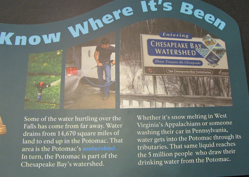 Signage About Potomac and Chesapeake Bay's Watershed - Great Falls National Park - McLean, VA  10-1-10