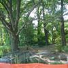 Nature Trail Closed for Upgrades - Bluebird Gap Farm - Hampton, VA