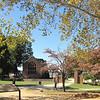 First View of Memorial Church - Historic Jamestown National Park, VA  10-22-10