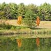 Autumn Reflections on the Pond - Jefferson Parkway Trail, Charlottesville, VA