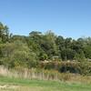 Looking at Pond From Conservatory Garden - Lewis Ginter Botanical Gardens - Richmond, VA