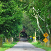 Meems Covered Bridge - Mount Jackson, VA<br /> The longest remaining covered bridge in Virginia.