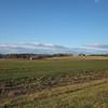 Pretty Winter Day Country Views on Blenheim Road, Albemarle County, VA  1-6-13<br /> Aventador Farm