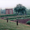 Vegetable Gardens - Monticello, Home of Thomas Jefferson, Charlottesville, VA  5-20-01