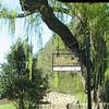Morven Entrance - Albemarle County, Virginia