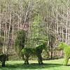 Topiary Along Driveway at Morven