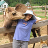 This Camel Doesn't Give Up Wanting to Snuggle - Donna and Chloe Snuggling or Snuzzling - Mountainside Petting Farm - Afton, VA  9-3-10