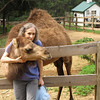 Calmer Chloe Camel - Mountainside Petting Farm - Afton, VA  9-3-10