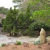 Japanese Garden Scene - Norfolk Botanical Gardens