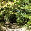 10-9  Fluvanna Heritage Trail