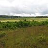 Last Views of Big Meadows on Our Ranger Walk - Shenandoah National Park - Milepost 51