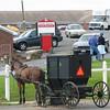 Dayton Farmer's Market - Amish Buggy