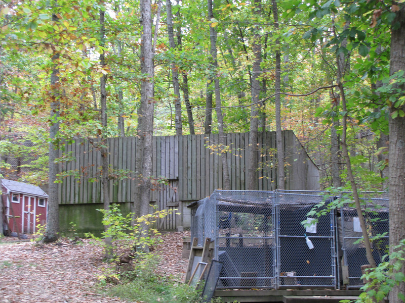 Large Building in Rear is the Flight Area for Raptor Rehabilitation - The Wildlife Center, Lyndhurst, VA  10-18-09