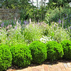 Gardens - Tuckahoe, Thomas Jefferson's Boyhood Home - Richmond, VA