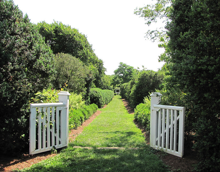 Gate to the Formal Gardens - Tuckahoe, Thomas Jefferson's Boyhood Home - Richmond, VA<br /> As with most estates in Virginia, entrances were lined with boxwoods.  Many plants move in and out of fashion, but one venerable evergreen outlasts all passing fancies - the English Boxwood - Buxus sempervirens 'Suffruticosa', proclaimed as nature's oldest garden ornamental. Its first known ornamental use occurred among the Egyptians about 4,000 B.C. Brought to the Virginia colony on tall-masted sailing ships during the 18th Century, the slow-growing English Boxwood enhances the landscapes of such national landmarks as the White House, Colonial Williamsburg, and Mount Vernon.