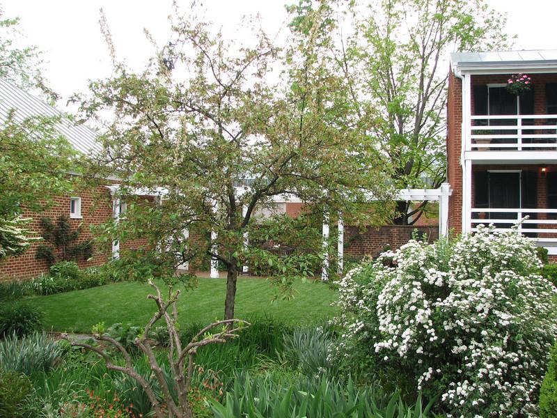 Charlottesville, VA - University of Virginia Homes - Open For Garden ...