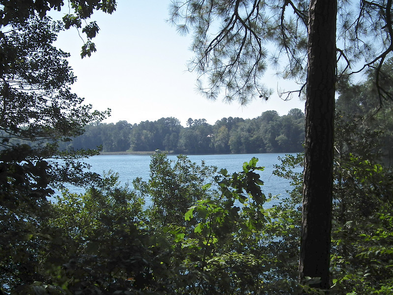 Another View of the Lake From the Trail - Waller Mill Park - Williamsburg, VA