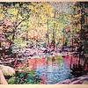 "Upper Rapidan Pool - Frederick Nichols<br /> Piedmont Valley Community College Exhibit - silkscreen, 2009"" -  <a href=""http://www.frednichols.com"">http://www.frednichols.com</a>"