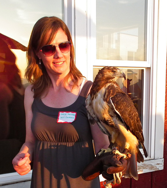 Darcie and Ruby, Red-tailed Hawk - The Wildlife Center Benefit at Carter Mountain Orchard, Charlottesville, VA  6-9-12<br /> Ruby was hit by a car which created a fracture in her left wing as well as severe trauma to her right eye.  After weeks of cage rest and bandaging, her wing healed – but her right eye had to be surgically removed.
