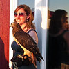 Darcie and Ruby, Red-tailed Hawk - The Wildlife Center Benefit at Carter Mountain Orchard, Charlottesville, VA  6-9-12