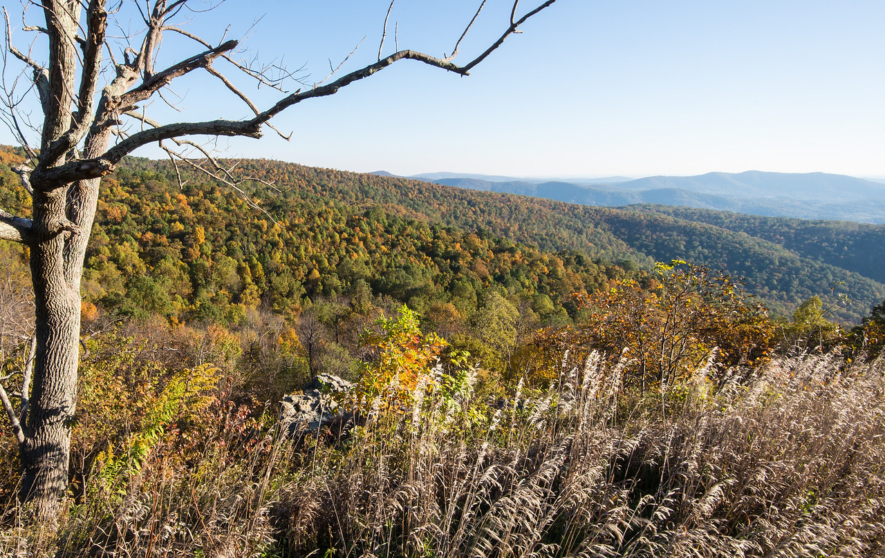 Shenandoah National Park - 19 October 2013