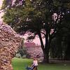 Bury St Edmunds, The Abbey grounds, sep 1971c