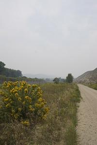 The wildlife preserve.