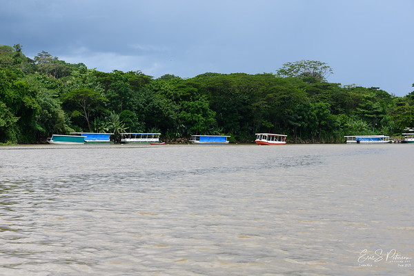 In the bend of the river, many tour boats are tide up.